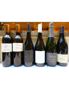 Organic Wines 6x75cl